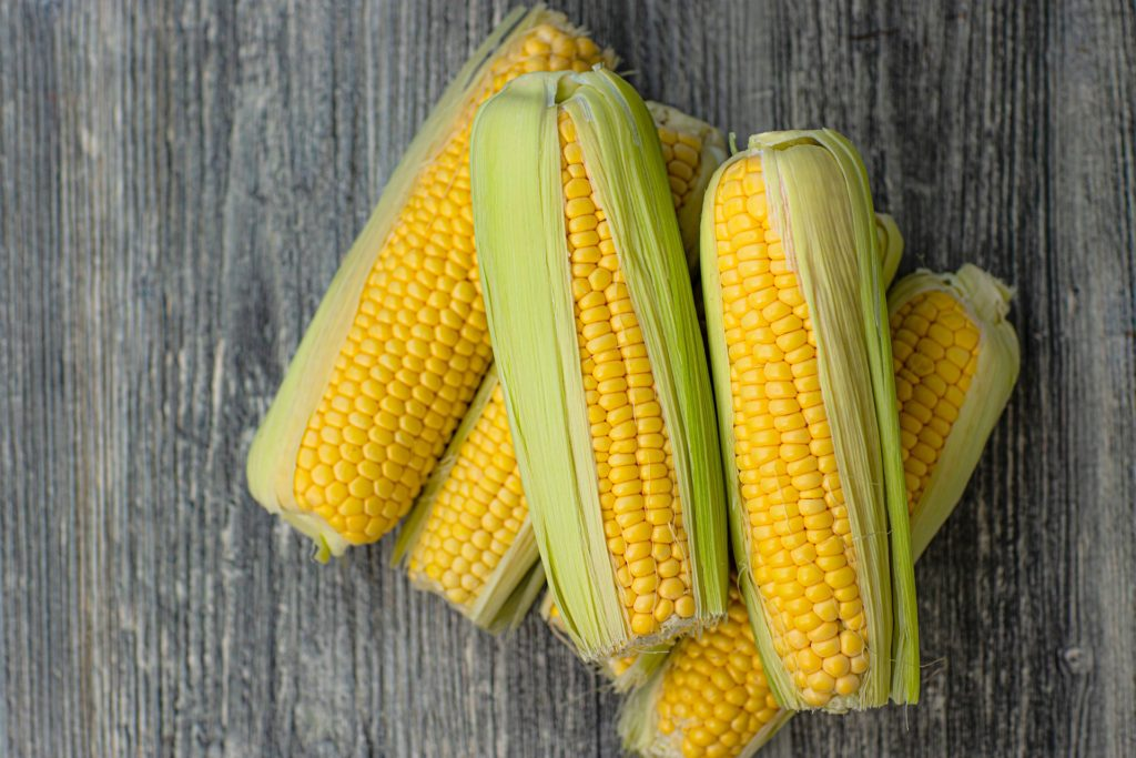 トウモロコシ, corn